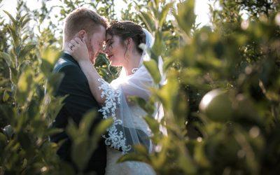 Bad Seed Cider Wedding   Emily + Wesley